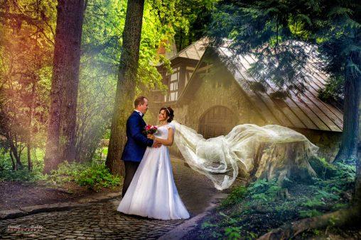 Fotografii nunta after wedding Sinaia Castelul Peles-26
