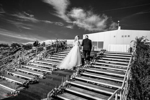 Fotografii nunta domeniile streiului 2019-55